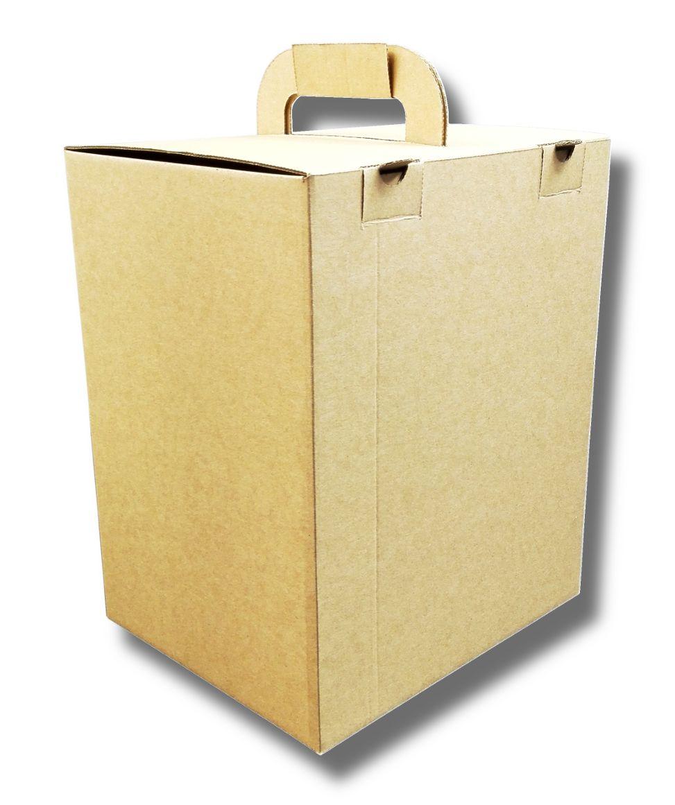 Pudelko Z Uchwytem Skladanym Na Plasko Dieta Box Na Pojemniki Obiadowe 190x230x285mm