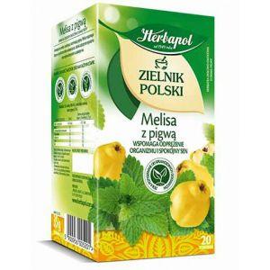 Herbata HERBAPOL Zielnik Polski, 20 torebek, melisa z pigwą op. 1 szt.